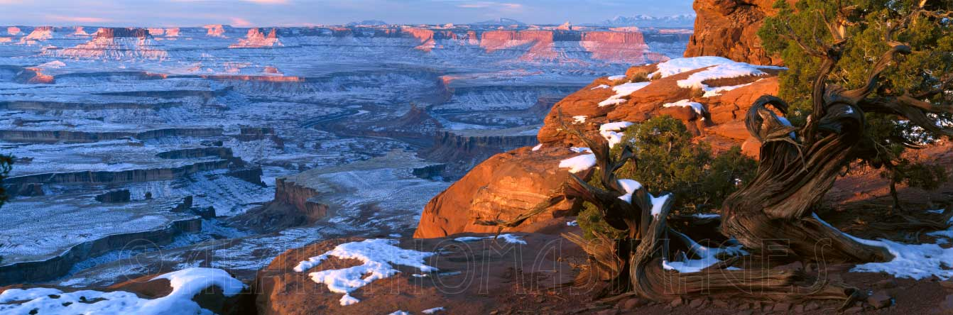 Green River Overlook, Island-in-the-Sky, Canyonlands National Park, Utah